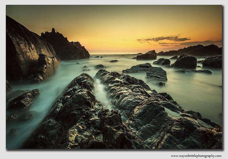 Ocean Dream's - 3 - W5D34994