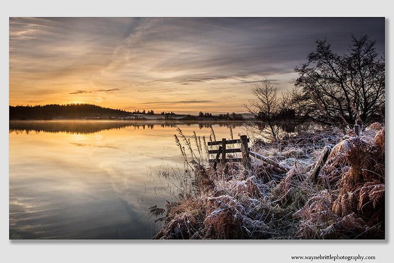 Frosty Rusky Morning - 1T6A0481