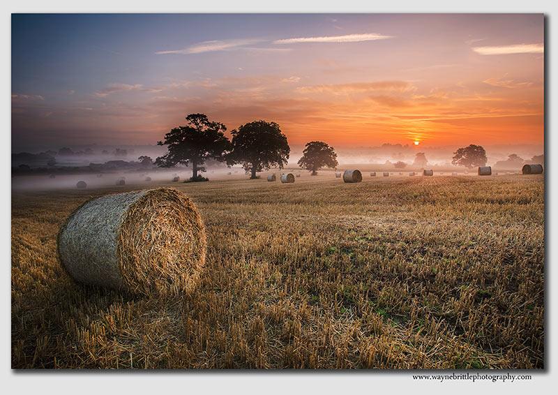 Hay Bales Dawn  -  W5D34147