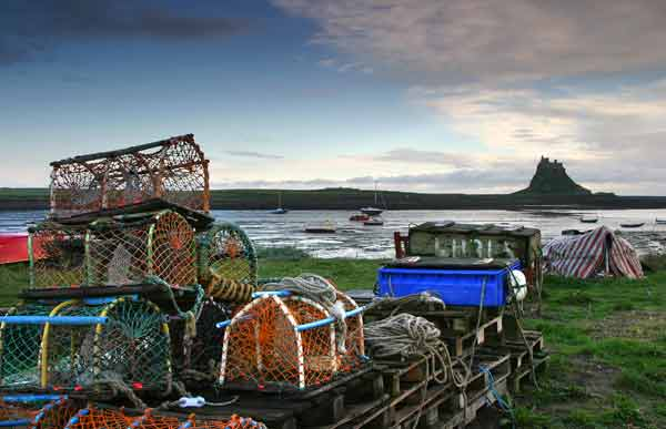 Lindisfarne Harbour - NS065
