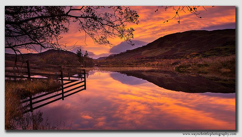 Loch-Tarff - Pre-Dawn-2 - W5D39648