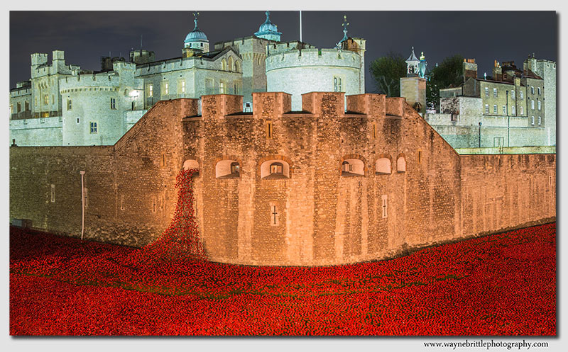The Tower Of London and its 'Poppies'. An amazing sight.
