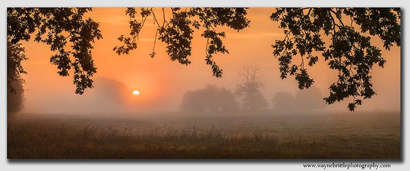Misty Sunrise at Elvaston Castle