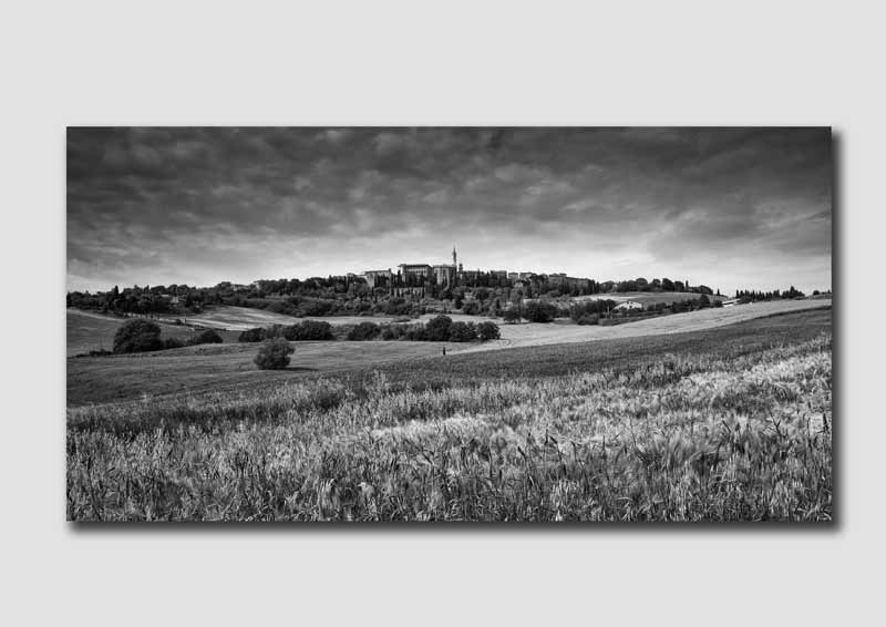 Pienza Fields - Black & White - TS0549
