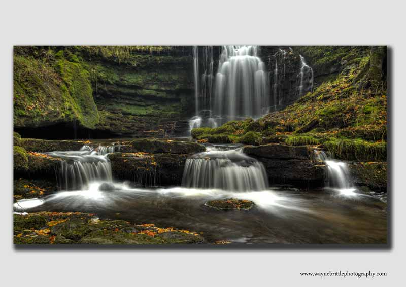 Scaleber Force Wide View -  YS2282