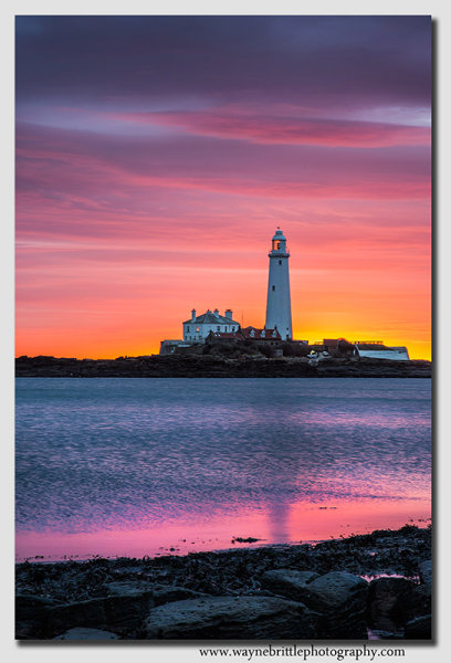 Per-Dawn, St Mary's Lighthouse - W5D36947