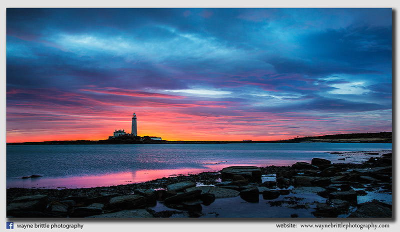St Mary's Lighthouse at dawn - W5D36952