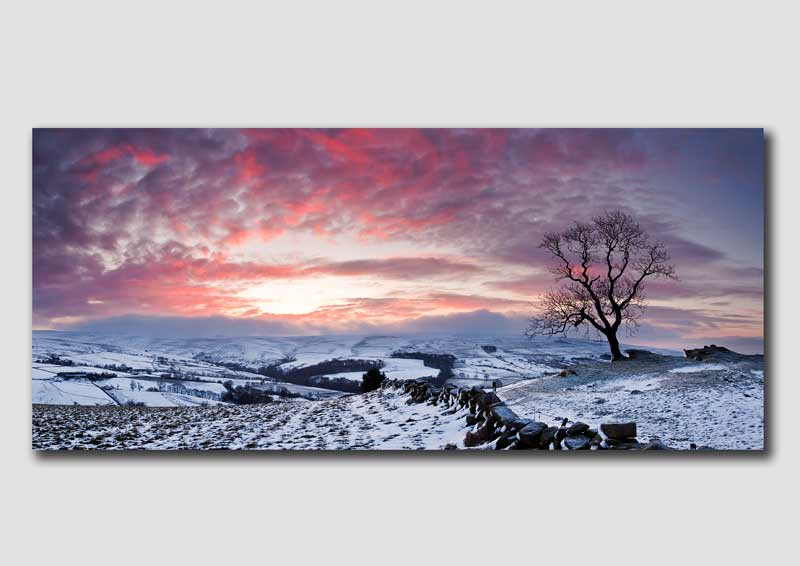 Staffordshire Moorlands Winter Dawn, Panorama - SP203