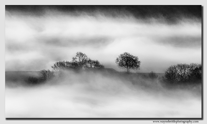 The Mist and the Light - FX8A8001