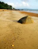 Quarantine Bay