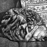 Tilly Asleep 10