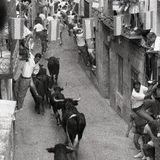 Encierro - Pastrana - Spain 1990