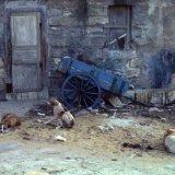 Trapani - Sicily 1984