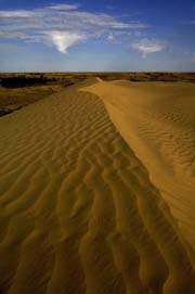 The Great Sandhills