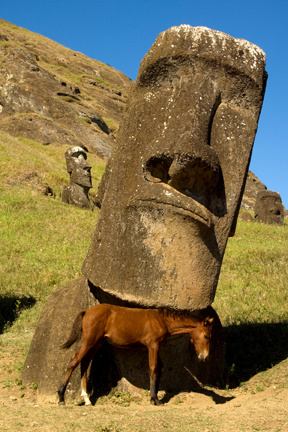 Easter Island scratching post.