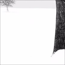Snowscene 8