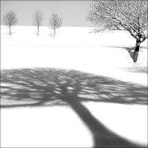 Snowscene 9