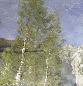 Impressions of Yosemite
