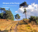 Book: Glimpses of the Forest