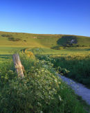 The path to the Long Man, Wilmington, Sussex