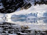 Glacier in Antarctica
