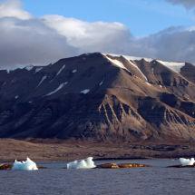 Three Icebergs