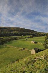 Gunnerside Farmland