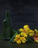 The Bottle and Flowers; 3rd place in A section prints; by Steve Hitchen