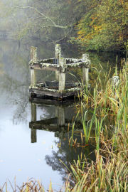 Still Waters, Fonthill