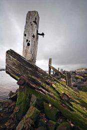 Amble old pier0012