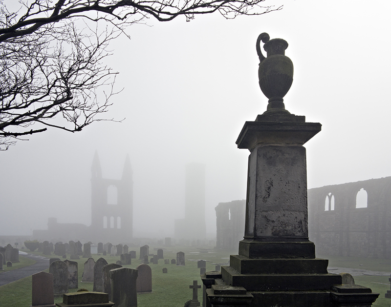 Cathedral in the mist0010