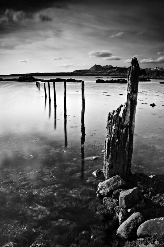 Drowned fence88b&w