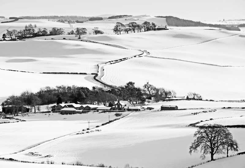 Fife snow fields0027b&w