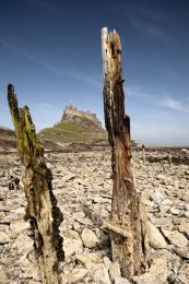 Lindisfarne castle0006