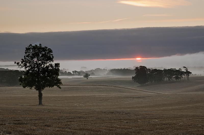 Misty Tayport morning 0008