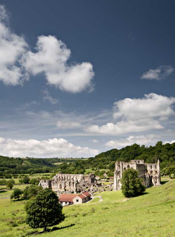 Rievaulx abbey007