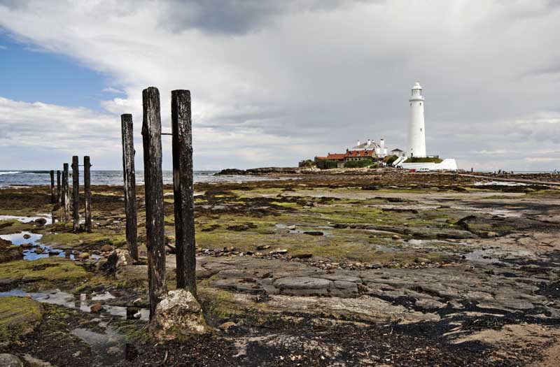 St Mary's lighthouse0024
