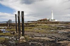 St Mary's lighthouse0024