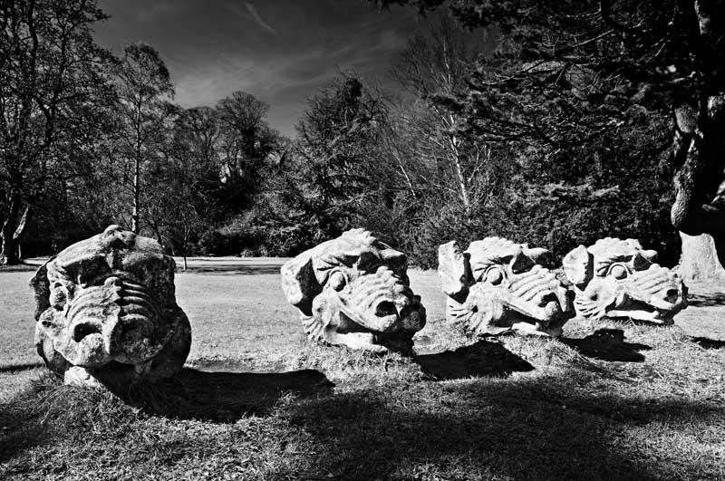 Buried dragons0023b&w