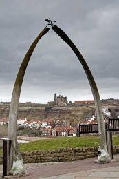 Whale bone arch0019
