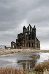 Whitby abbey0004