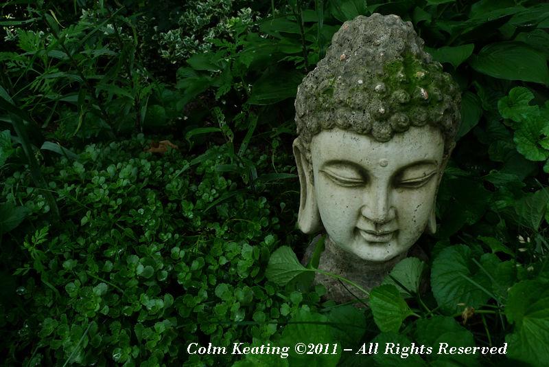 He ain't heavy he's my Buddha!