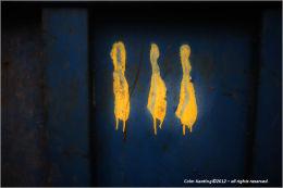 Mellow Yellow...women on a walk...