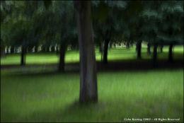 Slow exposure - Phoenix Park