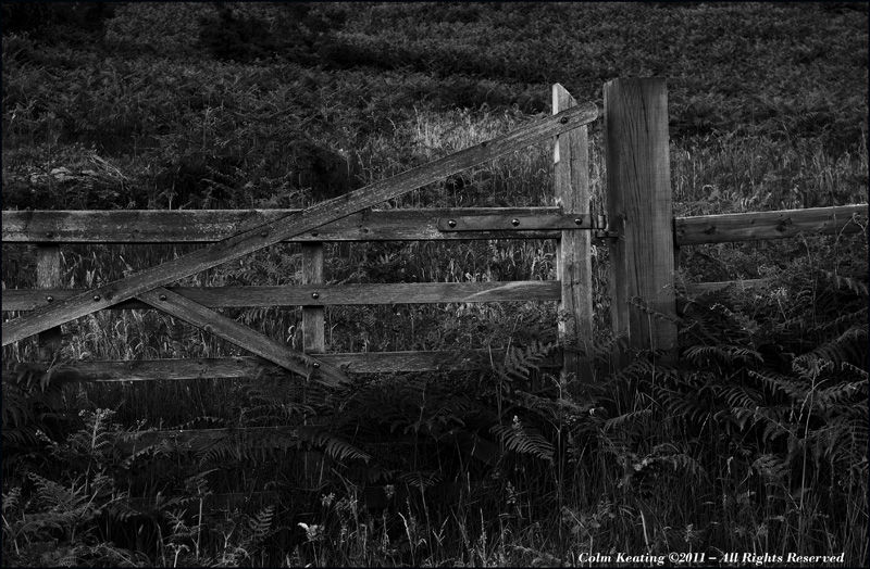 Wooden Gate & Post, near Glenmacnass Waterfall