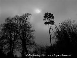 Willsbrook Park, Lucan