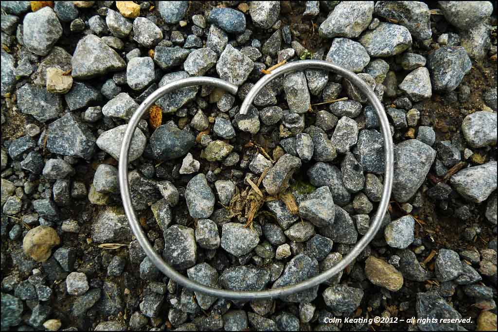 Metal Ring - Strokestown House.