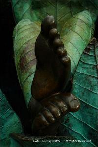 Tymon Pak Sculpture - Extract