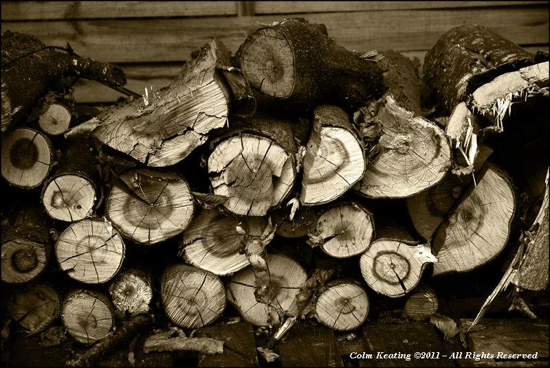 Barney's Wood Pile