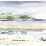 Ardwall Island from Carrick